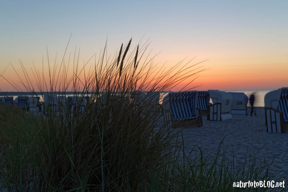 Prerow: Sonnenuntergang