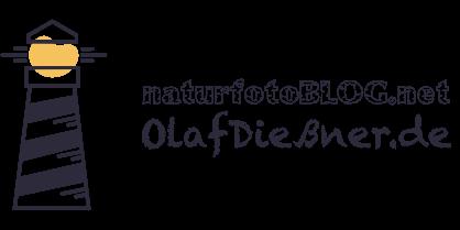 naturfotoBLOG | Olaf Dießner